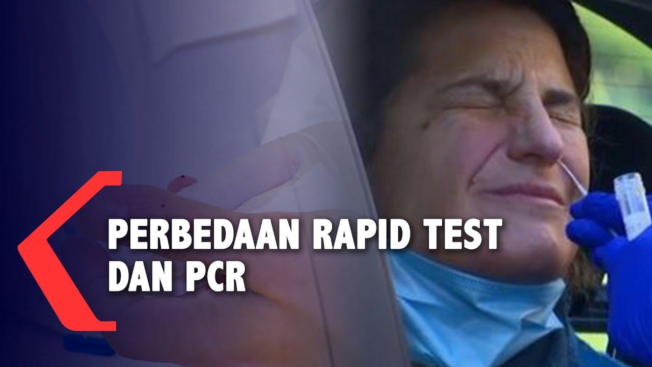 Ini Bedanya Rapid Test Dan Pcr Untuk Pemeriksaan Virus Corona Youtube