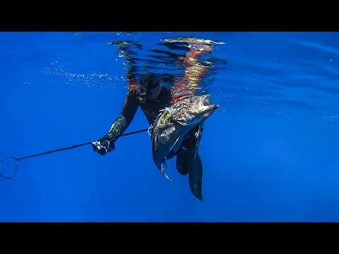 Pole Spearfishing in Greece vol.3 – 130 feet deep – Υποβρύχιο ψάρεμα με καμάκι  vol.3 ✔