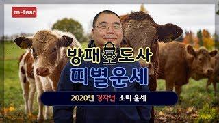 소띠운세 | 경자년 2020년 소띠 무료 운세 띠별 사주팔자 관운 | 방패도사