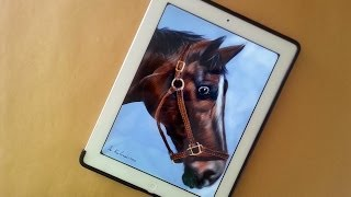 How I draw a Horse on Ipad with: Paper by 53