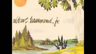 Albert Hammond Jr. - Scared