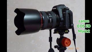서초동40년 - 2010년(1) canon EOS 5D…