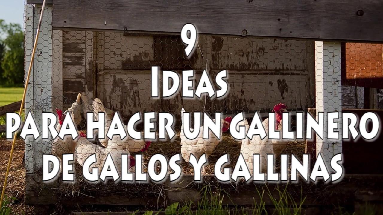 9 ideas para hacer un gallinero de gallos y gallinas youtube for Para desarrollar un parque ajardinado