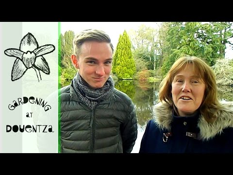 Working With Plants In Ireland - meet Dimitri