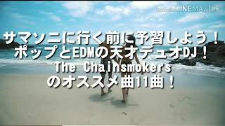 【EDM動画】(音量注意⚠️) サマソニに行く前に予習しよう!ポップとEDMの天才デュDJ!The Chainsmokersのオススメ曲11曲!