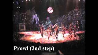 CATS - the choreographic sections of the Jellicle Ball