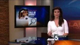 Ktla  Testing On Beagles Exposed -- Lu Parker Reports