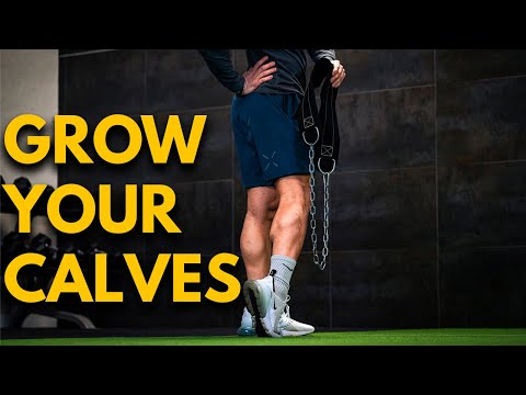 How To Build Your Calves With The Donkey Calf Raise FREE Guide For Strong Calves