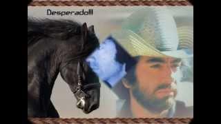 """""""Desperado"""" Neil Diamond"""