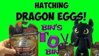 Hatching How to Train Your Dragon Mystery Eggs with Toothless! Review by Bin