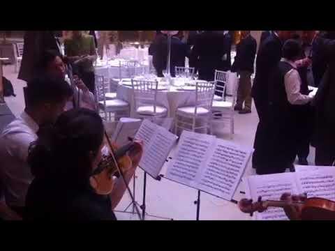 Cuarteto - concierto doble violin de Bach