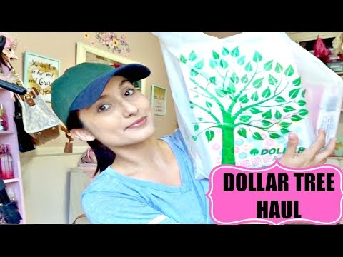 DOLLAR TREE HAUL | PLANNER FINDS