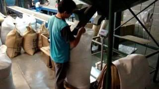 EFICO (HONDURAS) - GROWING, HARVESTING AND EXPORTING COFFEE