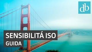 Sensibilità ISO: cos'è e come funziona • Ridble