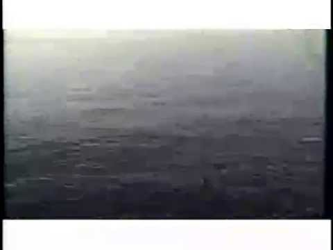 Ivy - Edge of the Ocean
