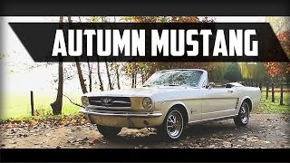 FORD MUSTANG USA 289 V8 Automatic 1965 - Full test drive in top gear - Engine sound | SCC TV