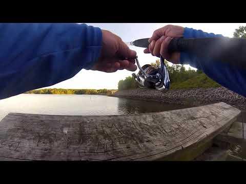 Fishing Jordan Lake NC for whatever will bite (Early Sept)