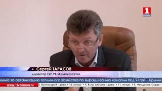 видео В Крыму перебои с поставками топлива