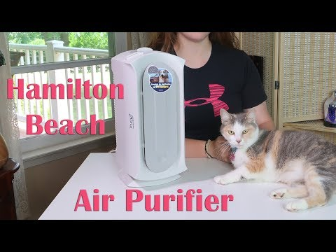 🍀Hamilton Beach AIR PURIFIER (04384) Specialized Pet Air Cleaner – HEPA & CARBON FILTER REVIEW 👈