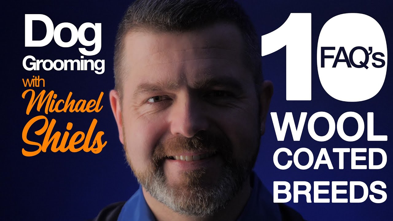 10 FAQ WOOL COATED BREEDS