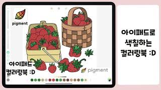 아이패드로 색칠하는 컬러링북:D pigment 소개해요…