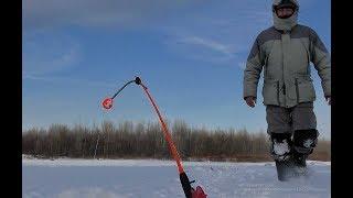 ВСЕ КОМБАЙНЫ ЗАГНУЛО!!!КРУПНЫЙ ОКУНЬ,ЩУКА И ПЛОТВА В ПРИЛОВЕ.Рыбалка на балансир и безмотылку.