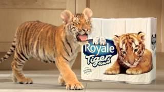 Royale Tiger (:30sec) HD - Cantonese Thumbnail