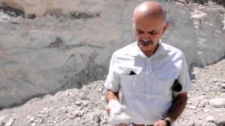 Kapadokya'da 12 Milyon yıllık fosil bulundu