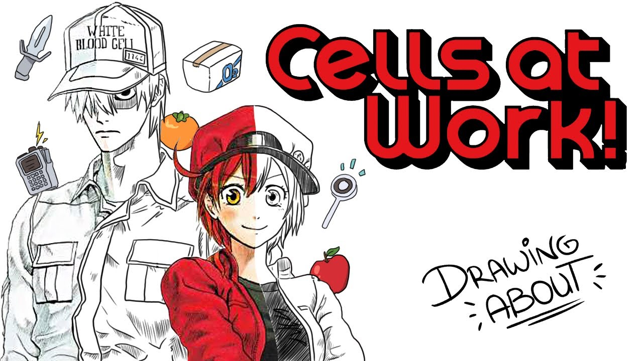 HATARAKU SAIBOU (CELLS AT WORK!) | Draw My Life