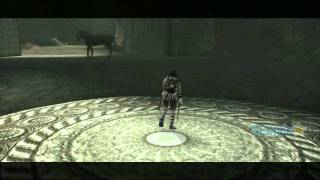 Shadow of the Colossus HD - Reaching the Final Colossus