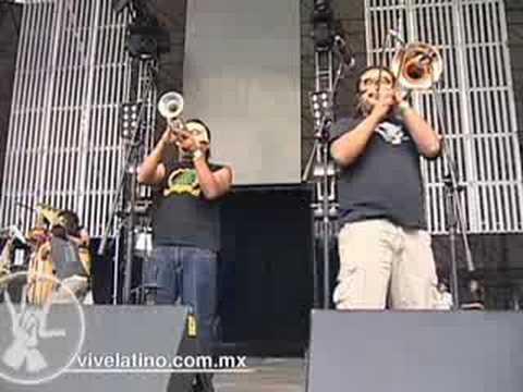 Panteon Rococo 01 La Dosis Perfecta Vive Latino 2008