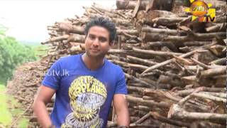 Hiru TV Top Light EP 302 | 2014-07-23