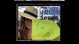 How To Sow Onion Seeds