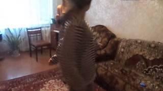 чундра-чучундра,СМОТРИТЕ ВСЕЕЕЕЕ!!!!!!