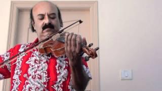 Chinna Chinna vanna kuyil - Violin Solo