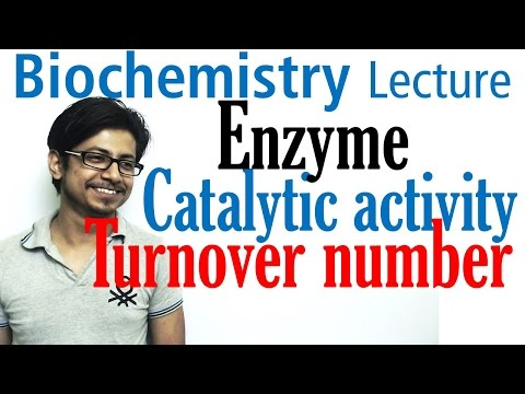 Catalytic efficiency (kcat/km) and turn over number of enzyme