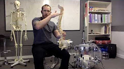 Drum Throne Height Mechanics, Prevent Back Pain, Increase Performance