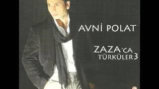 Avni Polat - Delilo 2