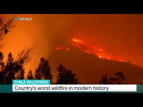 Chile Wildfires: Country's worst wildfire in modern history