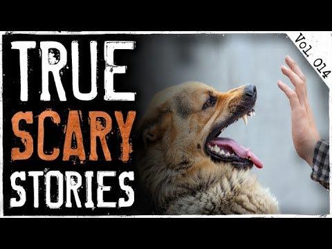 Dog Rescue & Neighborhood Weirdo   10 True Creepy Horror Stories From Reddit (Vol. 14)