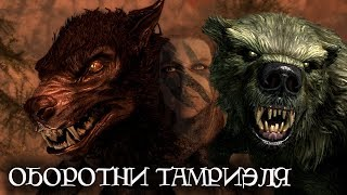Оборотни Тамриэля | The Elder Scrolls Лор