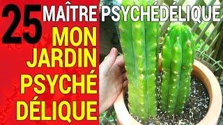 Maître Psychédélique #25: Mon jardin psychédélique