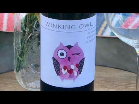 The Truth About Aldi's Winking Owl Wine