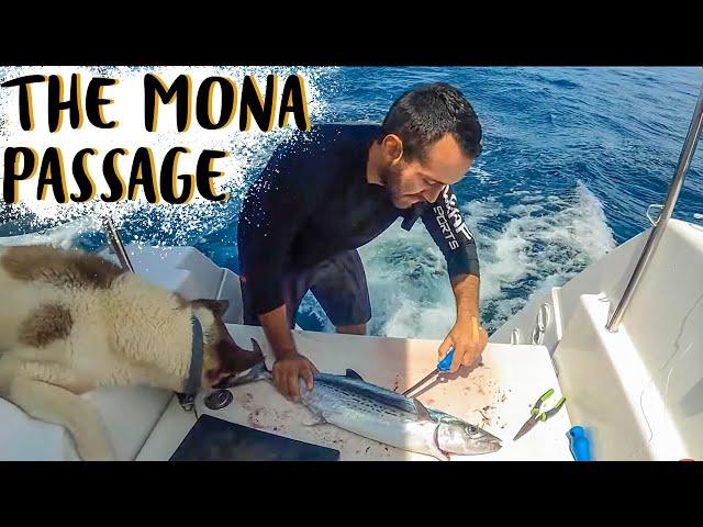 SAILING CATAMARAN THROUGH THE MONA PASSAGE | Sailboat Living