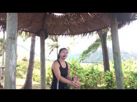 Maui Tropical Plantation Tour!