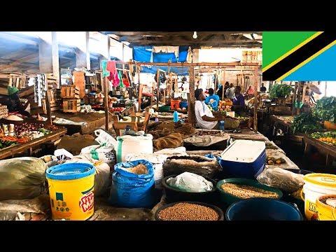 Tanzania Bagamoyo - Fish Market, Food Market, Weekly Market, Art Market