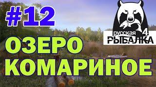 Російська рибалка 4. Озеро Комариное. Стрім 12.