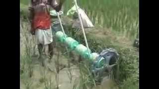 Fertilizer Application in Paddy Field by Rice Drum Seeder BURDWAN