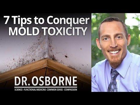 7 Tips to Conquer Mold Toxicity