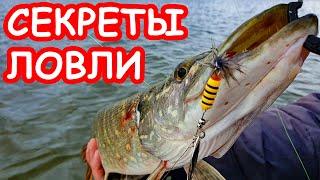 Секреты ловли пассивной щуки Приманки на щуку Рыбалка на щуку 2020